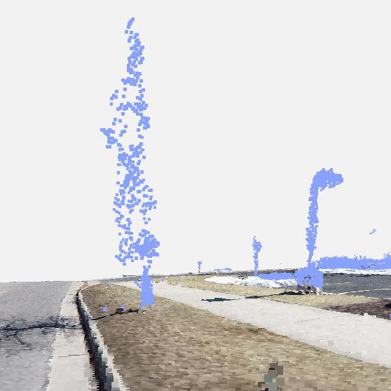 Pix4Dsurvey_above_ground_treshold_1.jpg