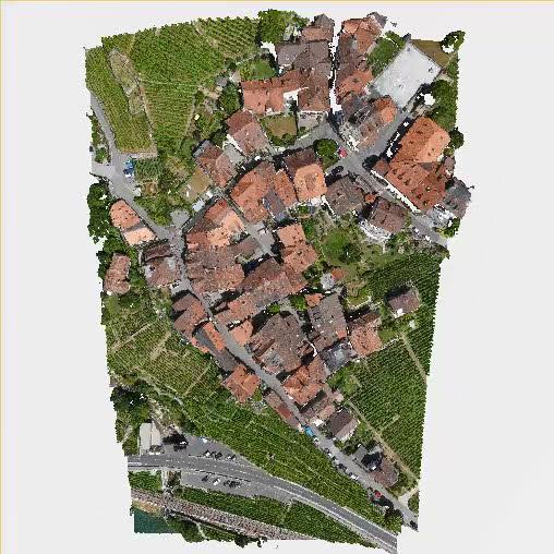 Pix4Dsurvey_4_terrain_non-terrain_RGB.jpg